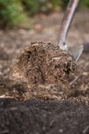How to Prepare the Soil for Spring Gardening
